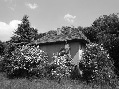 Hürtgenwald